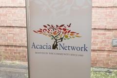 Acacia-2343