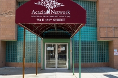 Acacia-3737