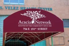 Acacia-3738