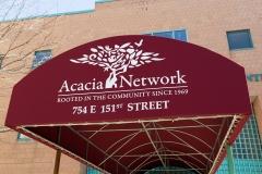 Acacia-3739